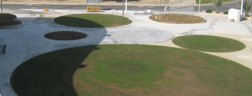 Plaza Mustang